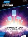 Norton Quantum Ceramic Mounted Points Flyer