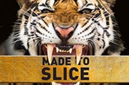 NQ3-Slice-preview
