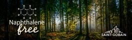 Tree-image-WEB