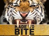 Tiger-market-page-image