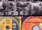 norton_clipper_celebrates_80_years_1059269f1b1b9c8